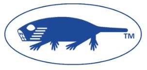 blue-molerat-web-page-mjd