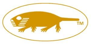 molerat-animal-logo-yellow-mjd