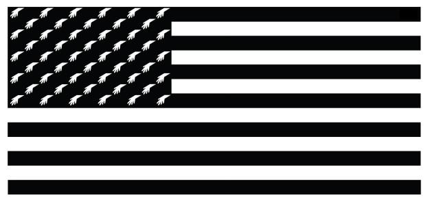 molerat-flag-usa-mjd
