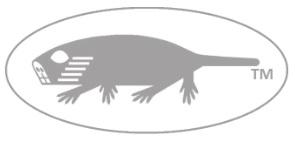 molerat-light-grey-oval-animal-mjd